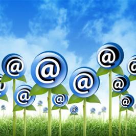 5 Tips: Email Marketing Basics